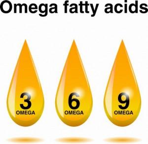 fatty-acids4521067