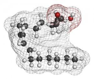linoleic-acid23001