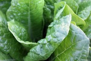 green-vegetables-1149790_640