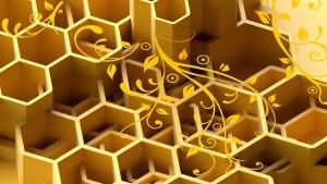 honey-1274798_640