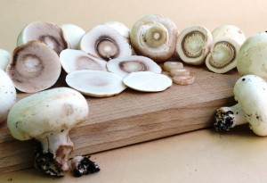 mushrooms-899094_640