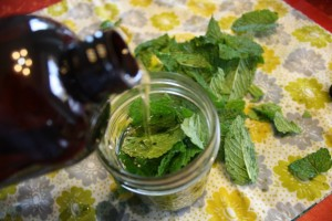 pepper-mint-oil3