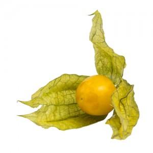 golden-berry31924