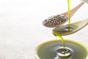 hemp-oil7896735