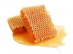 Maple-syrup-honey11