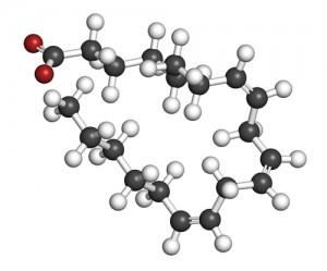 fatty-acid488417905
