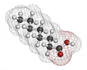 fatty-acids5529275