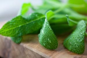 Fresh-Sage-Leaves-iStock