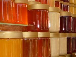 honey-5728_640