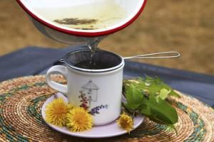 dandelion-tea-step4