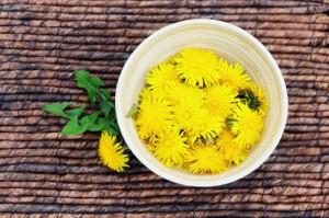 dandelion-tea7924524