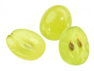 grape-seed-beauty17965