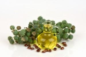 castor-oil56874344